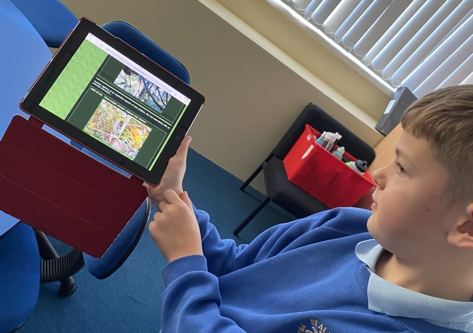 E-safety in Year 4